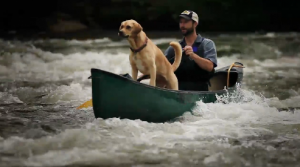 Take a look at the French Broad Paddle Trail