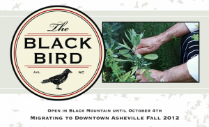 UPDATED, OPENING MOVED BACK INDEFINITELY Asheville Scene: Blackbird restaurant to open downtown on Oct. 13