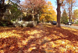HD Video: Fall stroll in Asheville