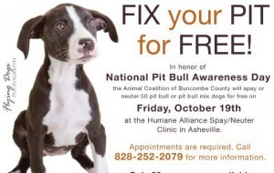 Fix your pit bull or pit bull mix for free