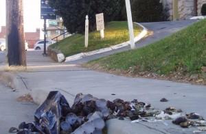 Asheville's downtown trash problem