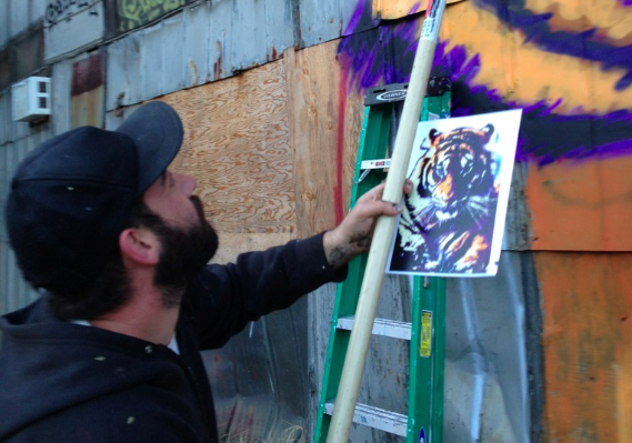 Photos: Spagnola at work on tiger mural at New Belgium Brewing site