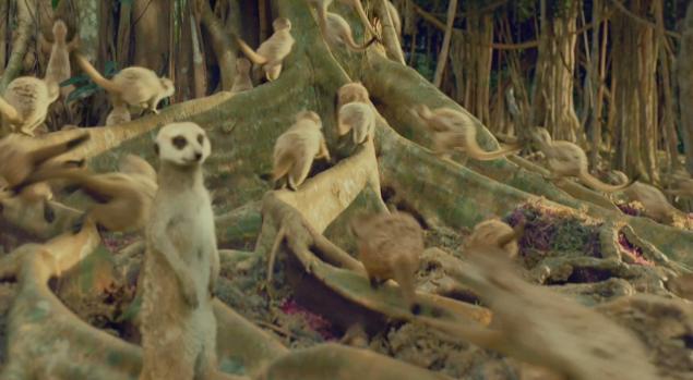 Ashvegas movie review life of pi for Life of pi animals