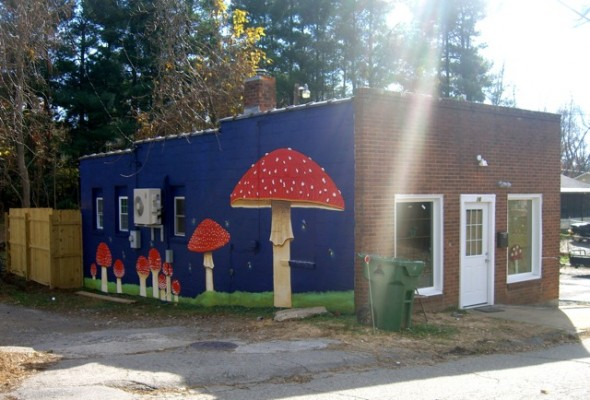 Asheville Fungi in West Asheville: It's open!