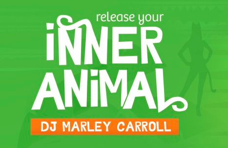 Party tonight to benefit Animal Compassion Network