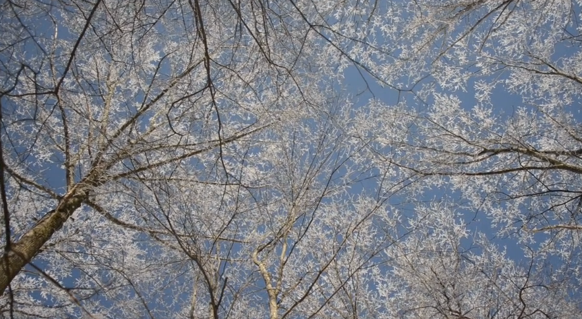 Beautiful video: Winter on the Appalachian Trail