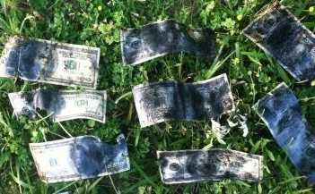 Asheville business owner tweets son's find of hundreds in cash in pond
