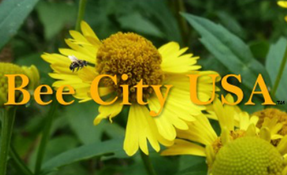 Asheville sets Bee City USA events for June 14-22