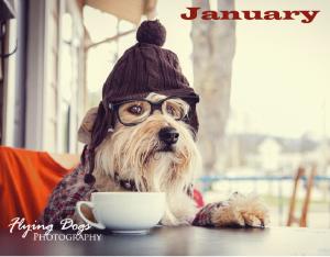 dogs_of_asheville_calendar1