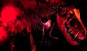John_Payne_dinosaur_2013