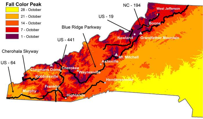 Fall leaf color outlook for Asheville area: Heavy rain may dull display