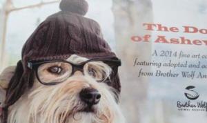 dogs_of_asheville_calendar_2014
