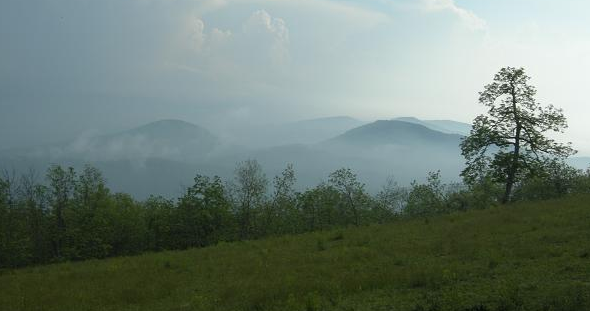 WNC Alliance hosts free Bearwallow Mountain Trail hike and Hickory Nut Gap Farm open house Saturday
