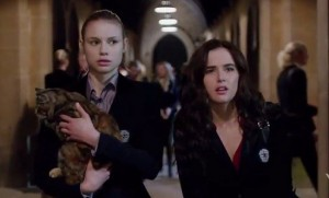 Vampire Academy (The Weinstein Company)