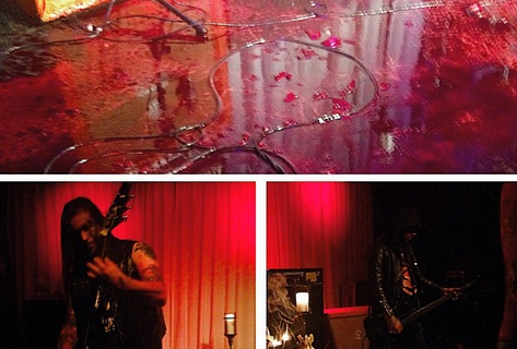 Bloody Sunday at the LAB: Metal band sprays pig's blood during Asheville show; venue closed for cleaning