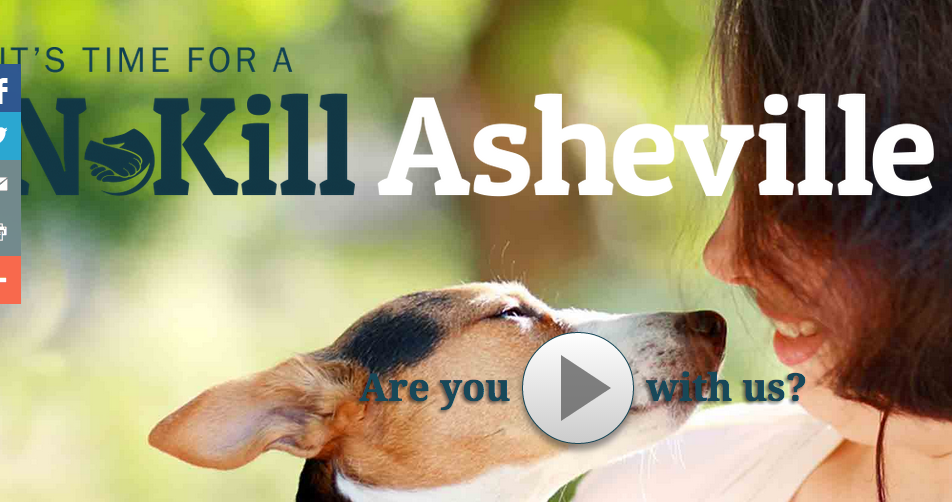 Brother Wolf Animal Rescue launches major no-kill campaign in Asheville area