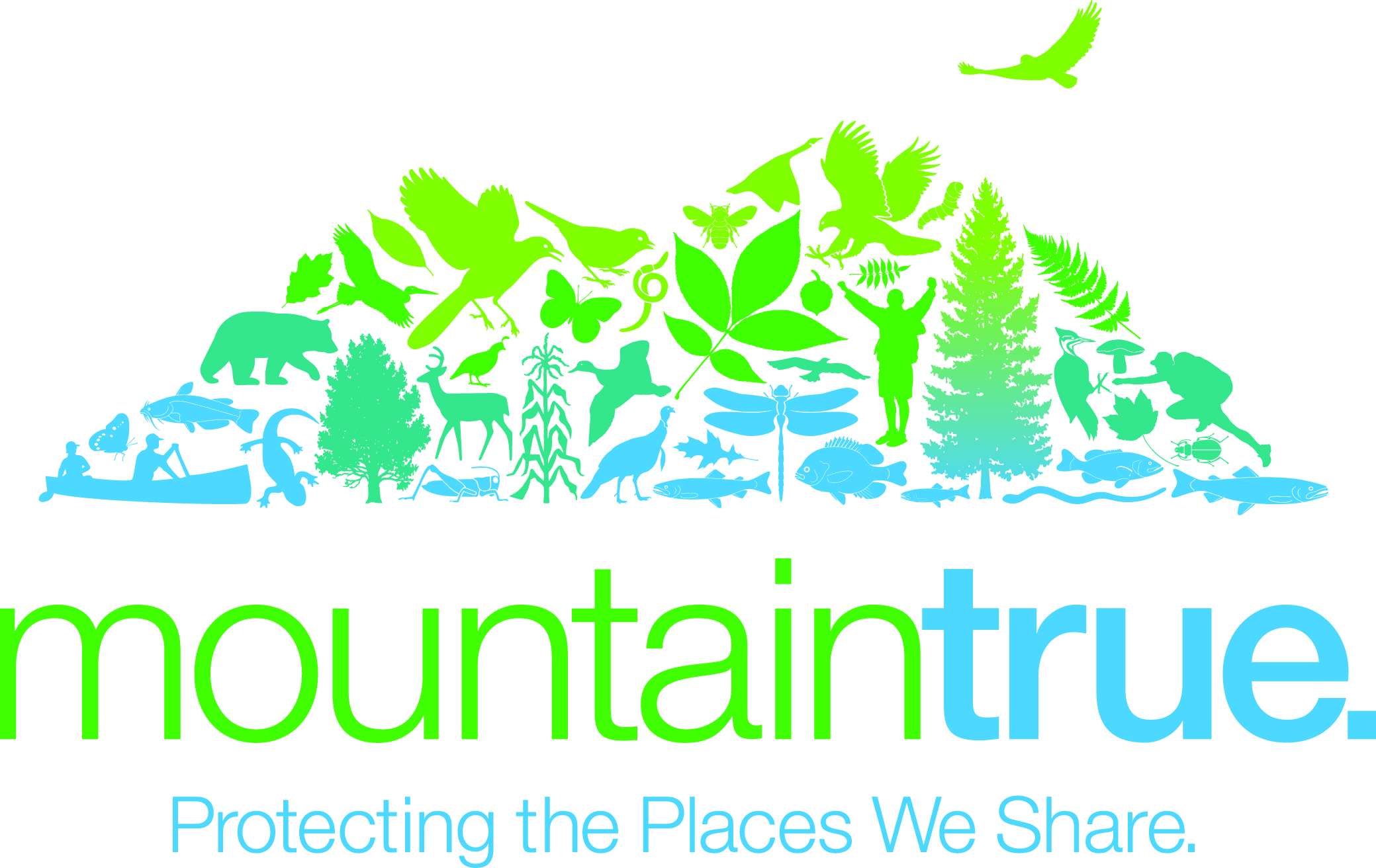 WNC Alliance and partner orgs adopt new name, Mountain True, and logo