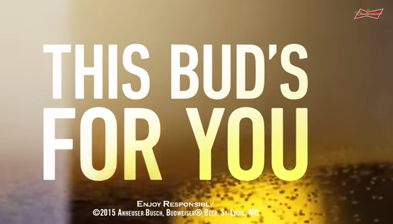Budweiser Super Bowl ad kicks craft beer in the nuts; will Asheville aka Beer City USA respond?