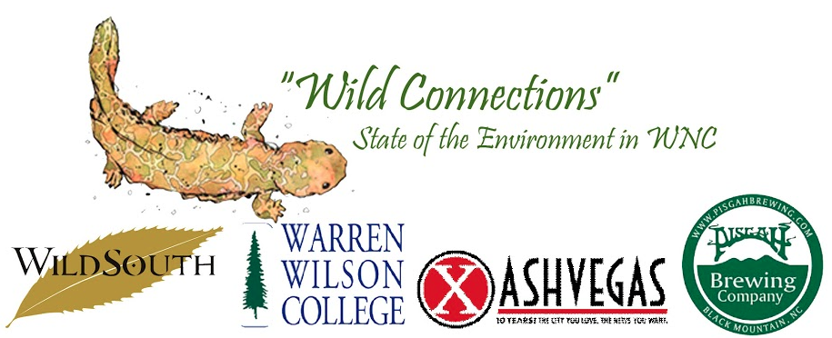 Wild Connections: A call to learn about WNC's wild places, then work to defend them