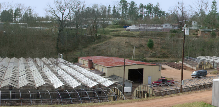 Former greenhouse property in West Asheville finding new life as live/work studios