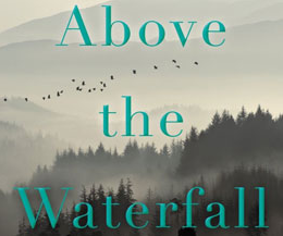 Mostly sparkling reviews for WNC author Ron Rash's new novel, 'Above the Waterfall'