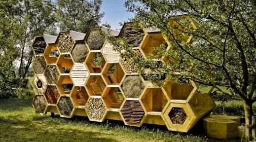 'Bee Hotel' to be unveiled at UNC Asheville on Friday