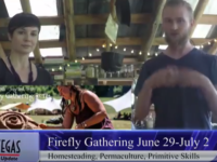 VIDEO: Firefly Gathering, July Fourth and more Asheville weekend events