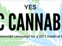 Medical marijuana should be legal in N.C., says Asheville City Council