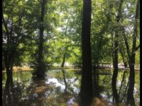 Relentless May rain triggers mudslides, flooding, other dangers