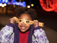 At Winter Lights, 500,000 lights will festoon North Carolina Arboretum